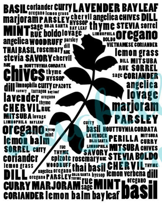 Herb Typography Kitchen Art - Black and White Wall Art Print