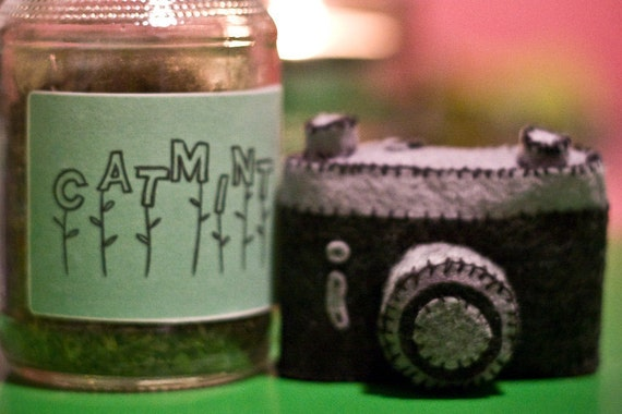 Hand Sewn Felt Film Camera Cat Toy - Filled with ORGANIC Catnip