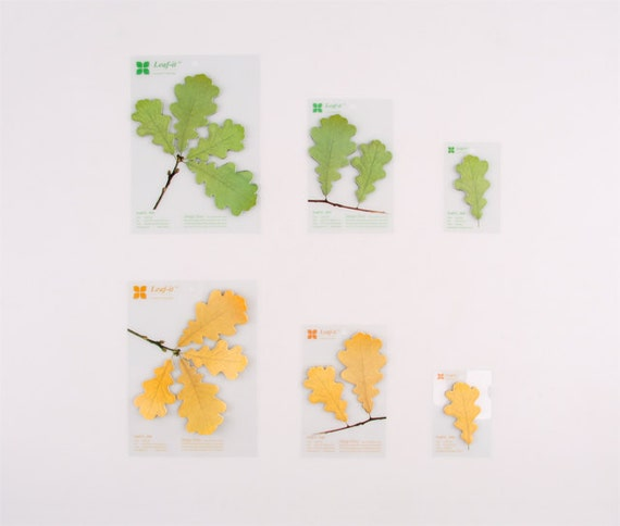 Oak leaves Sticky-notes - Spring - Large (duo)