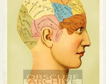 PHRENOLOGY - Restored Vintage 1900's Mental Map - Photographic Print