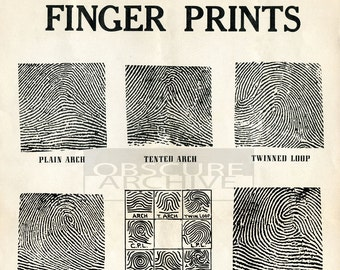 FINGERPRINTS - Restored 1930's Chart For Fingerprint Identification - Vintage CSI