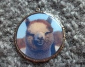 Alpaca  Photo Keychain