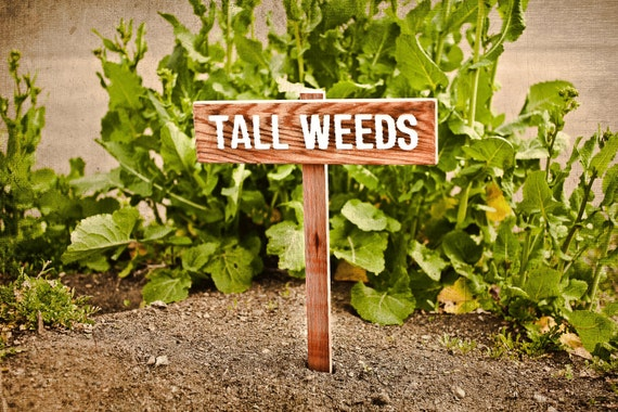TALL WEEDS Yard or Garden Humor Sign, Painted & Oil Sealed Cedar Wood: Hand Routed, Custom Garden Sign, Personalized Garden Marker
