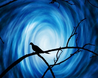 Heaven's Dove -Hope Peace Easter Silhouette -Faith & Religion -Blue White Black  -Fine Art Photograph Print -Home Decor Wall Art