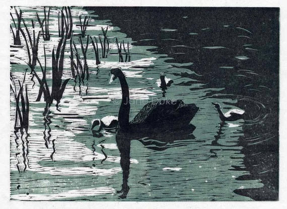 Black Swans original woodcut print blue and black handpulled print
