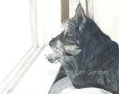 Schnauzer Terrier Dog Art Signed Print