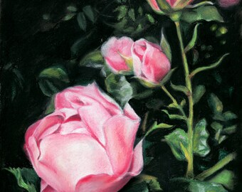 Pastel art drawing, Roses part 2, 13 X 18 cm, flowers, postcard, pink flowers, free shipping,