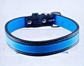 Custom Dog Collar Leather Medium Classic Blue ON SALE