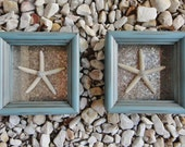 Beach Shadow Boxes with Lady Finger Starfish that make truly unique Beach Decor