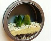 Fridge Magnet Terrarium