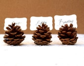 Wedding Place Cards, Escort Card, Favor, Pine Cone Card Holder Table Setting Rustic Country Decoration Autumn Fall Winter Christmas Brown 20