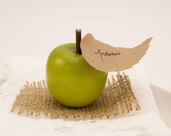 Apple Escort Cards, Country Wedding Guest Name Place Cards for your Wedding Table Decoration, Barn, Rustic, Farm, Green