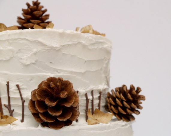 Cake Decorating Cone Make : Items similar to Pine Cone Cake Topper Decorations for ...