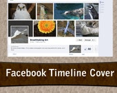 Photos Pre-made Facebook Timeline Banner Cover