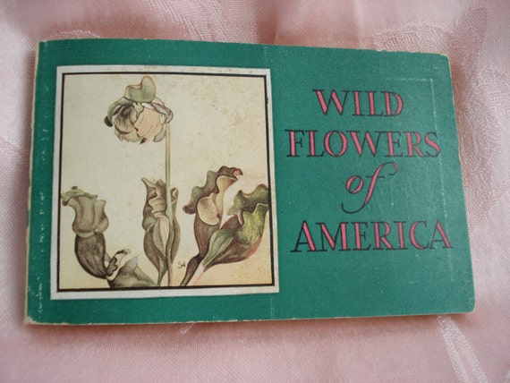 Vintage Wild Flowers of America Book Jane Harvey 1932 Irving Lawson Illustrator Tiny Book