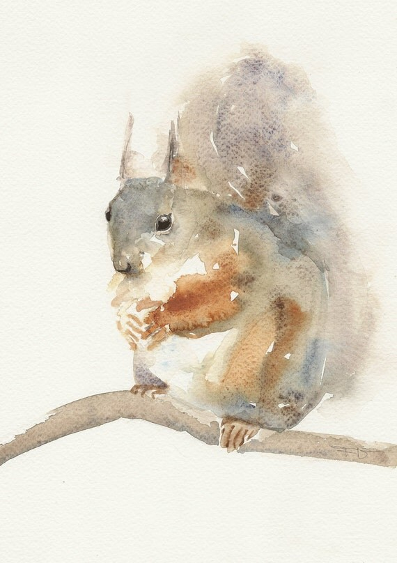 Squirrel, original watercolor painting, animal art, watercolour painting art.