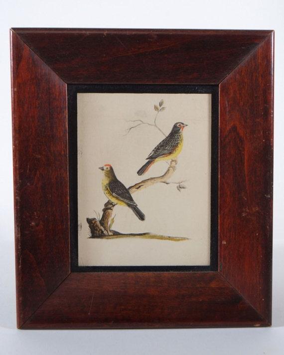 Vintage Miniature Walnut Frames Birds