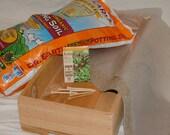 Organic Sweet Lettuce Salad Mix Grow Kit