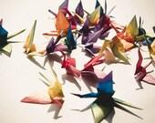 Origami Birds - 25 piece Rainbow Colorful Origami Cranes - Mobile, Home Decor, Paper Goods