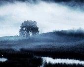 Navy Blue, Tree, Fog, Landscape, Nature, Home, Office Decor