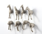 Wild Stallion Horse pack Magnet Set - 8 piece set - grey gray horses for a horse lover