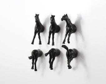 Horses Magnet Set - 6 piece set - black horses