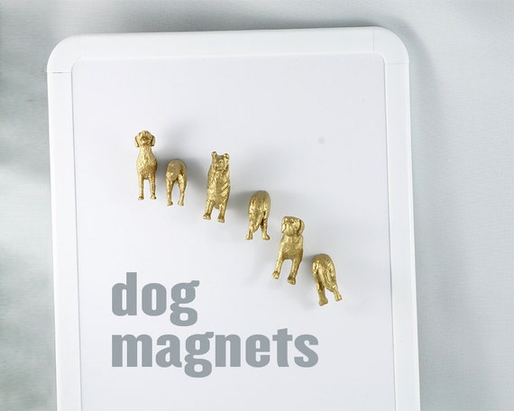 What are your favorite Dogs  -  Set of six (6) magnets