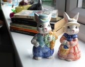 Cute novelty mr & mrs bunny rabbit country style cruet set salt and pepper pots collectable.