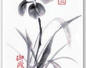 Greeting Card - Iris- Wildlife Sumi-e Japanese Brush Painting - Reproduction Art Card