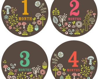 Baby Monthly Stickers - Whimsical Woodland - Baby Girl Monthly Stickers - Milestone Stickers - Bodysuit Stickers - Set of 12