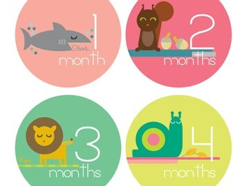 Zoo Animal Monthly Stickers - Pet Detective - Baby Girl Monthly Stickers - Bodysuit Stickers - Milestone Stickers - Set of 12