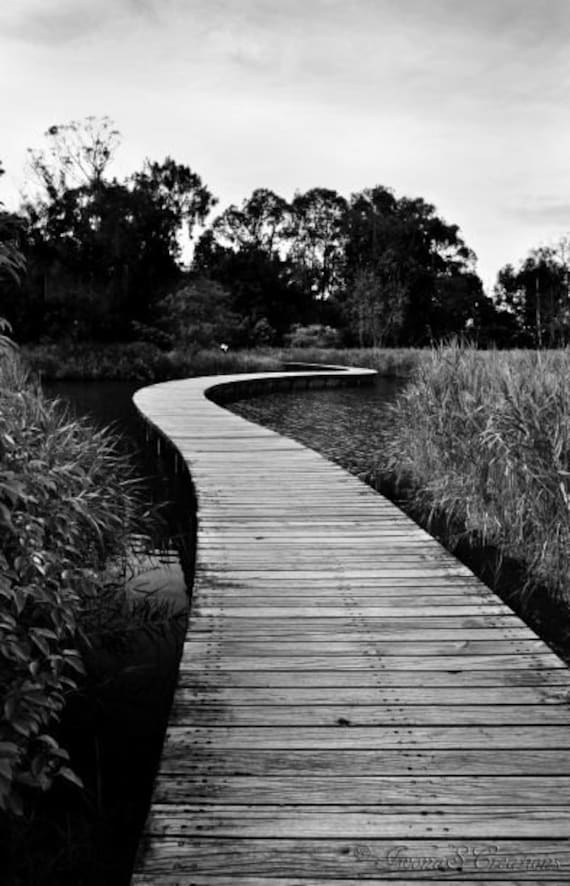 items similar to black and white photography fine art