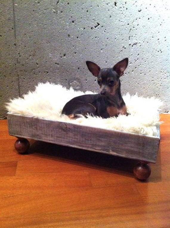 """Blow Out Sale - Luxury Wine Crate Pet Bed for a Dog Or Cat (With Sheep Hide) - This Listing Expires on """"September 14th"""""""