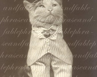 Dapper Cat 064 Steampunk Suit Formal Posh Feline Digital Graphic Transfer Download LOL Funny