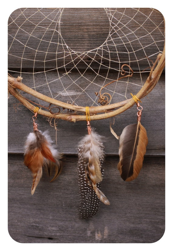 Grapevine Dream Catcher: My Tribute to the Guineas