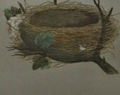 1892...Antique Nest & Egg Nature Print by Morris...Garden Warbler CXXIII