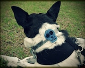 Skull Dog Collar Charm - Your Choice of Blue, Purple, Teal, Pink, or Bone - Skully Sam Collection - Hand Crocheted