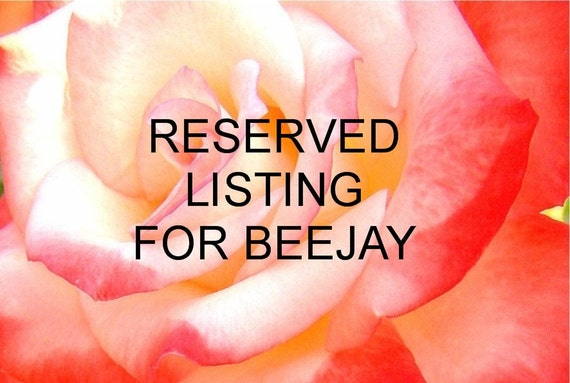 Reserved Listing for Beejay - Cinderella Chatelaine
