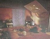 1978 SPACE AGE MOD Bed and Bath book Conran Mid Century Modern design Sexy