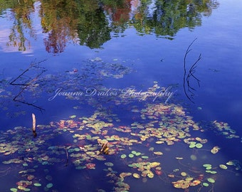 Pond Reflection with Leaves and Fall Color, Fine Art Photo Print