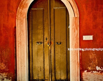 Turkish Kitty-Istanbul Turkey-Travel Photography-Multiple Sizes Available-Red-Color-Doors-Fine Art Photography-gift