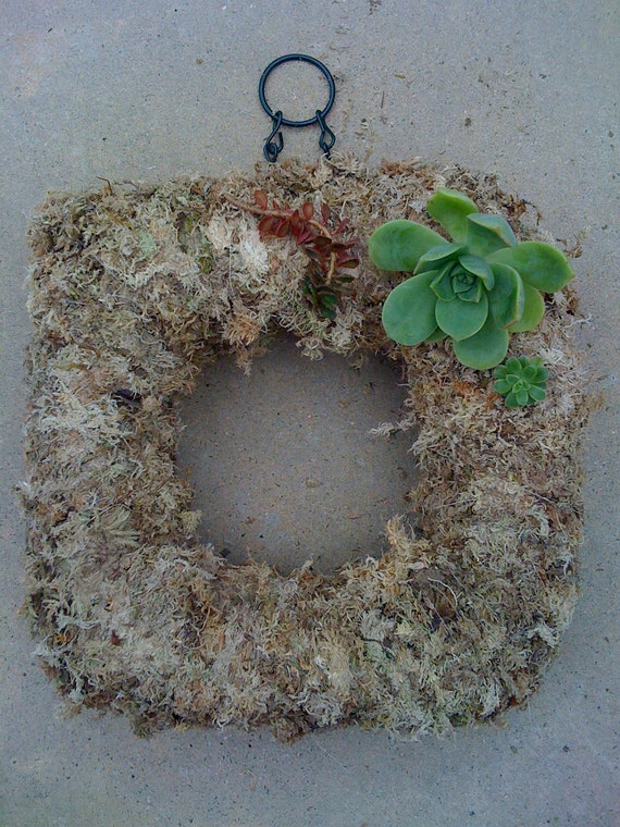 "Reserved for Jenna as a gift for her Mother - 10"" square DIY wreath, 55 cuttings, 30 floral pins"