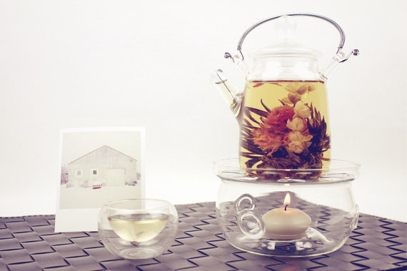 Exotic Glass Teapot Set with 3x Double Glass Tea Cup & Teapot Base Stand - Best for Flowering Tea Blooming Tea Jasmine Tea