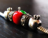 The Apple of My Eye European Charm Bracelet With Red Apple Charm - Gift Idea For Teachers