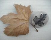 Painted Pebble - Liquidambar Leaf (Item 4)