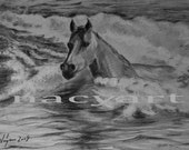 Horse in the see, pencil and charcoal drawing print, black and white, 8x12 inc., SALE 40% OFF WAS 16 now 10