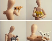 Set of four 5x5 farm animal prints - Pig cow goat dog nursery photography - Barn yard kids or baby room decor
