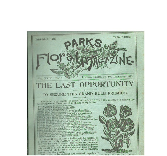 Parks Floral Magazine 1893 Illustrated Gardening Pamphlet