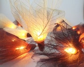 2sets for  evamftrim 20 Earth Tone Bodhi Leave Flower Fairy Lights String 3.5M Home Accent Floral Party