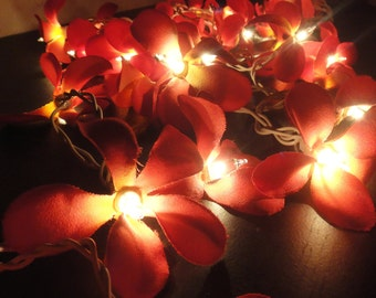 35 Globes Red Frangipani Fairy Lights String Accent Floral Party Patio Wedding Floor Table or Hanging Gift Home Decoration 4m.